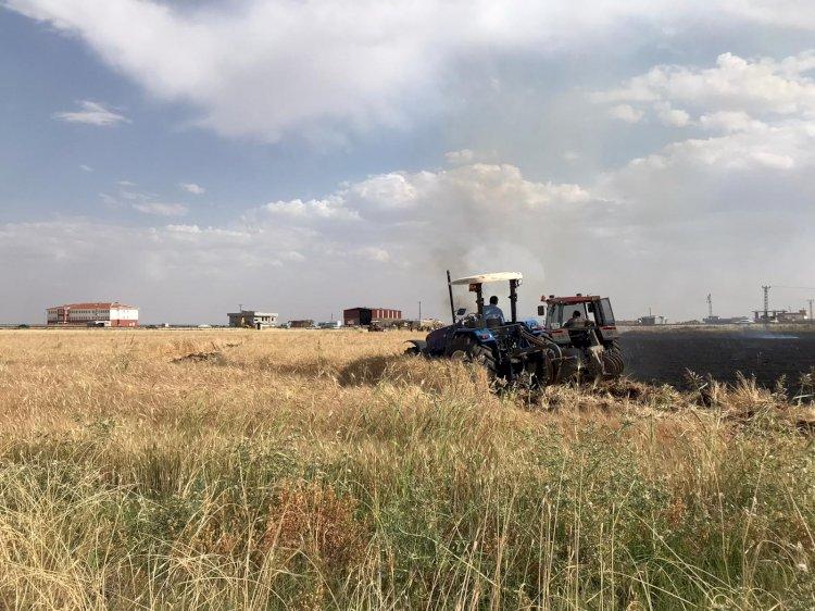 Urfa'da çıkan yangın 40 dönümlük araziyi yok etti!